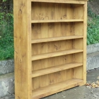 Bookcase with wide movable shelves